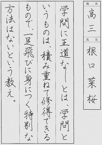 200704根口 菜桜